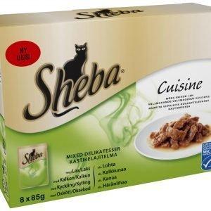 Sheba Cuisine Kastikelajitelma 8 X 85 G  Kissan Annospakkaukset