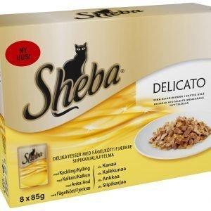 Sheba Delicato Siipikarjalajitelma 8 X 85 G Kissan Annospakkaukset