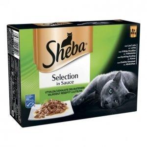 Sheba Selection 8x85g Valikoidut Reseptit Annospussissa