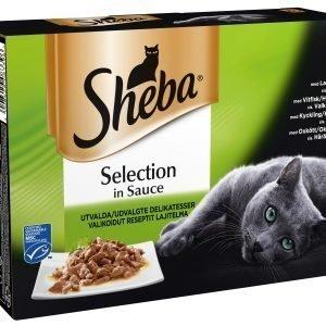 Sheba Selection Valikoidut Reseptit 8 X 85 G Kissan Annospakkaukset