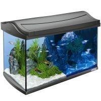 Tetra AquaArt LED Aquarium 60 L - P 61