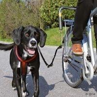 Trixie Biker Set de Luxe -pyöräilytalutin - metallikiinnitys pyörään