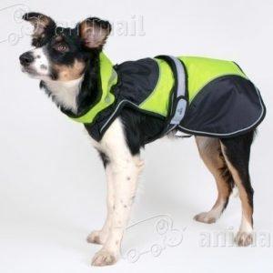 Trixie Koiran Takki Safety Flash