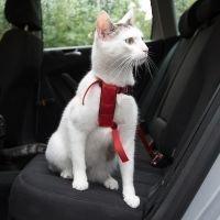 Trixie-autovaljaat kissalle - punainen