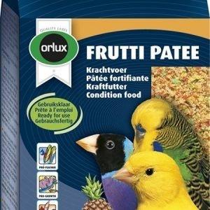 Versele-Laga Orlux Frutti Patee Voimaruoka 250 G