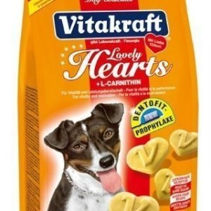 Vitakraft Lovely Hearts Hundkex 300g