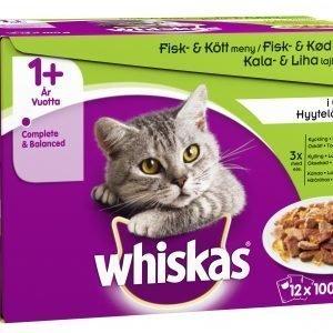 Whiskas 1+ 12 X 100 G Kala&Lihalajitelma Hyytelössä