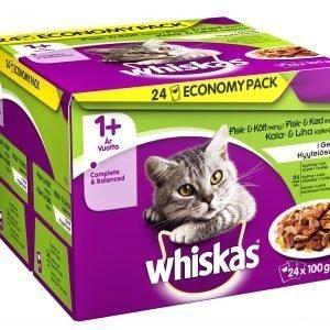 Whiskas 1+ Kala&Lihalajitelma Hyytelössä 24 X 100 G Kissan Annospakkaus