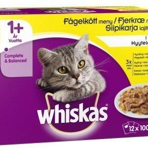 Whiskas 1+ Siipikarja Hyytelössä 12 X 100 G Kissan Annospakkaus