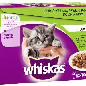 Whiskas Junior Kala&Lihalajitelma Hyytelössä 12 X 100 G Kissan Annospakkaus
