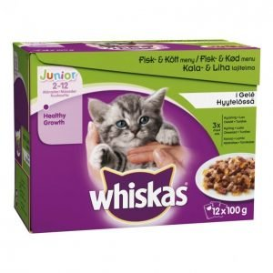 Whiskas Kissanruoka 12x100g Junior Kala&Lihalaj