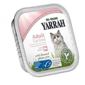 Yarrah Cat Organic Salmon Paté 16x100 G