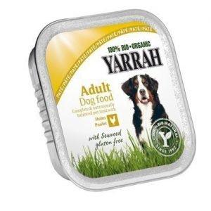 Yarrah Dog Organic Chicken Chunks 14x150 G